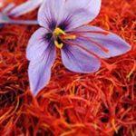Saffron01