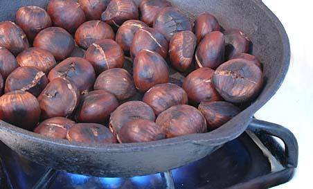 Chestnut02