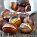 Chestnut03