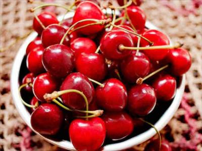 Kashmiri Cherry – Coming Soon
