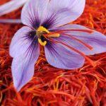 Kashmir Store – Saffron